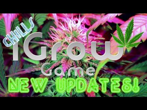 "iGrow New Year New High! 2017 ""NEW UPDATES!! Xmas Bud CROSS BREEDING!!"" Weed growing game"