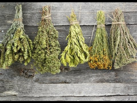 Image result for dried herbs pictures