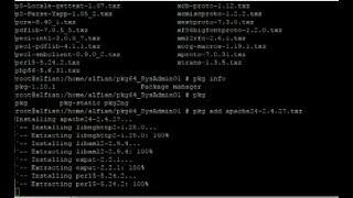 pkg2zip install Mp4 HD Video WapWon