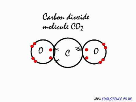covalent bonding in a carbon dioxide molecule