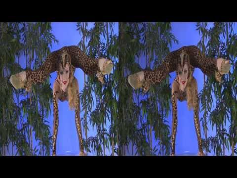 CONTORTION 3D - Best Of CIRCUS ARTS (trailer)