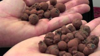 Compare Hydro Korrels VS. Hydroton Grow Rocks - Monster Gardens | HydroKorn Plantit Plant!t Clay