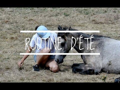 ROUTINE D'ÉTÉ avec les poneys