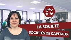 La société : les sociétés de capitaux - Droit - digiSchool