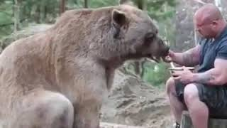 This man is a real friend of His domestic bear