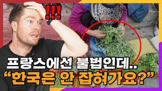 프랑스인이 한국 길바닥에 널려있는 '이것'…