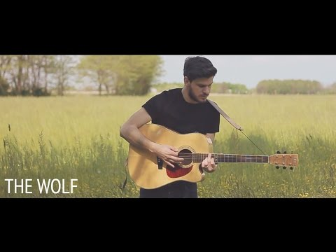 Mumford & Sons - The Wolf (Acoustic Folk Cover By Damien McFly)