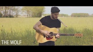 Mumford & Sons - The Wolf (Acoustic Folk Cover By Damien McFly) Mp3