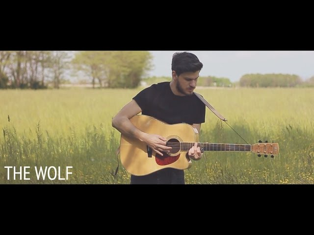 mumford-sons-the-wolf-acoustic-folk-cover-by-damien-mcfly-damien-mcfly