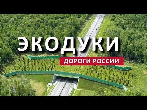 ДОРОГИ РОССИИ. ЭКОДУК НА ТРАССЕ М-3 УКРАИНА. НОВАЯ РОССИЯ