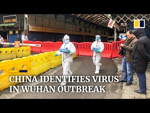 China identifies new coronavirus behind Wuhan pneumonia outbreak