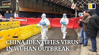China identifies new coronavirus behind Wuhan pneumonia outbreak