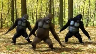 Single Terbaru -  Titanium David Guetta Dangdut Koplo Version