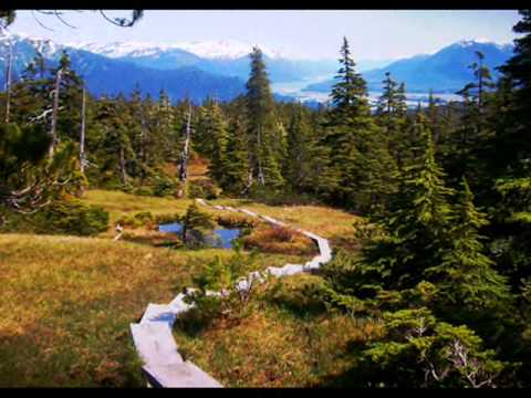 Juneau, Alaska: Mt Roberts, Juneau Ice Field, Hiking & Bears