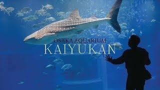 ไปดูฉลามวาฬเป็นๆที่ OSAKA AQUARIUM พิพิธภัณฑ์สัตว์น้ำที่เป็นไฮไลท์ของโอซาก้า