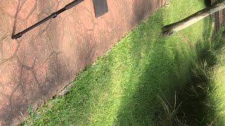 50 sombras de TURBOSTEPS