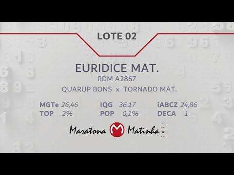 LOTE 02  Maratona Matinha