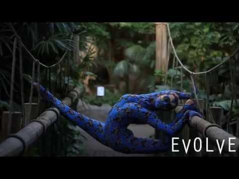 Homosexuální contortionist sex