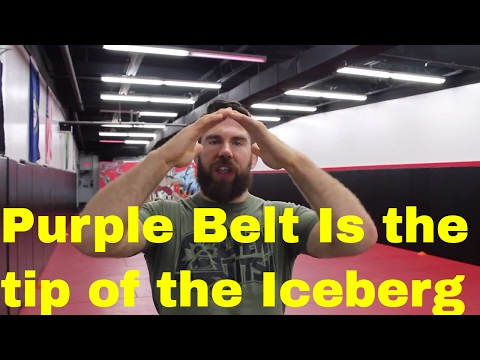 What to Focus on as a Purple Belt in BJJ (The Prototype Belt)