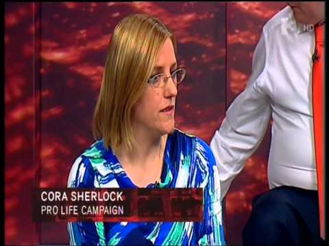 8th Amendment Debate - Vincent Browne Show 15th September 2015