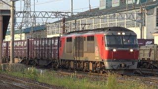 【4K】JR函館本線 DF200-107号機牽引 貨物列車 五稜郭駅発車