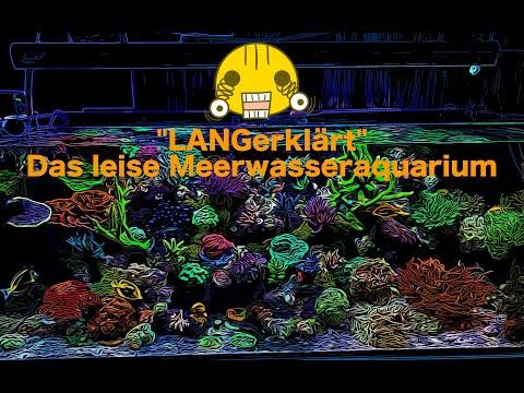 """""""langerklärt""""-das-leise-meerwasseraquarium"""