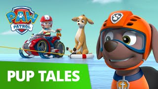 Everest and Zuma Save the Deer! 🦌 PAW Patrol Pup Tales Rescue Episode