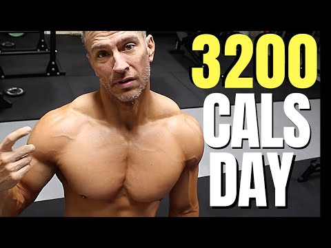 how-many-calories-per-day-|-muscle-up-fat-down