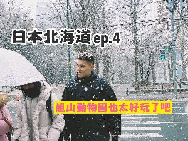 【北海道系列 ep.4】旭川動物園、白鬚瀑布、精靈露台、超便宜公仔店、超好吃燒肉