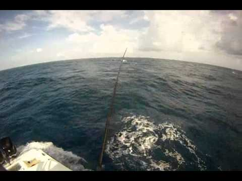 Sailfish with Double D Charters