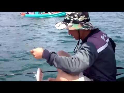 Câu cá biển Phú Quốc