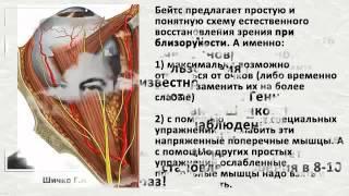 Монастырский чай Минск  Как восстановить зрение