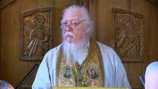 Протоиерей Димитрий Смирнов. Проповедь о жизни в избытке