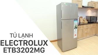 Đánh giá tủ lạnh Electrolux 321 lít ETB3202MG | Điện máy XANH