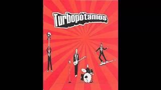 Turbopótamos - El Metro