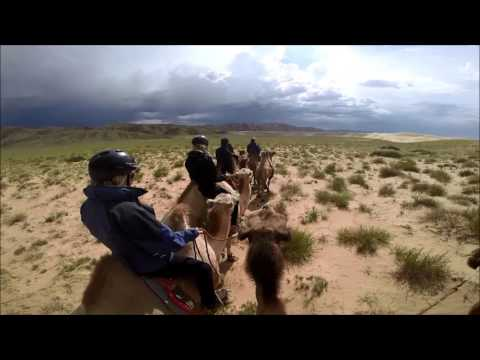 What it's like to ride camels in Mongolia