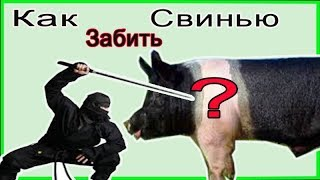 Как правильно забить свинью //Жизнь в деревне