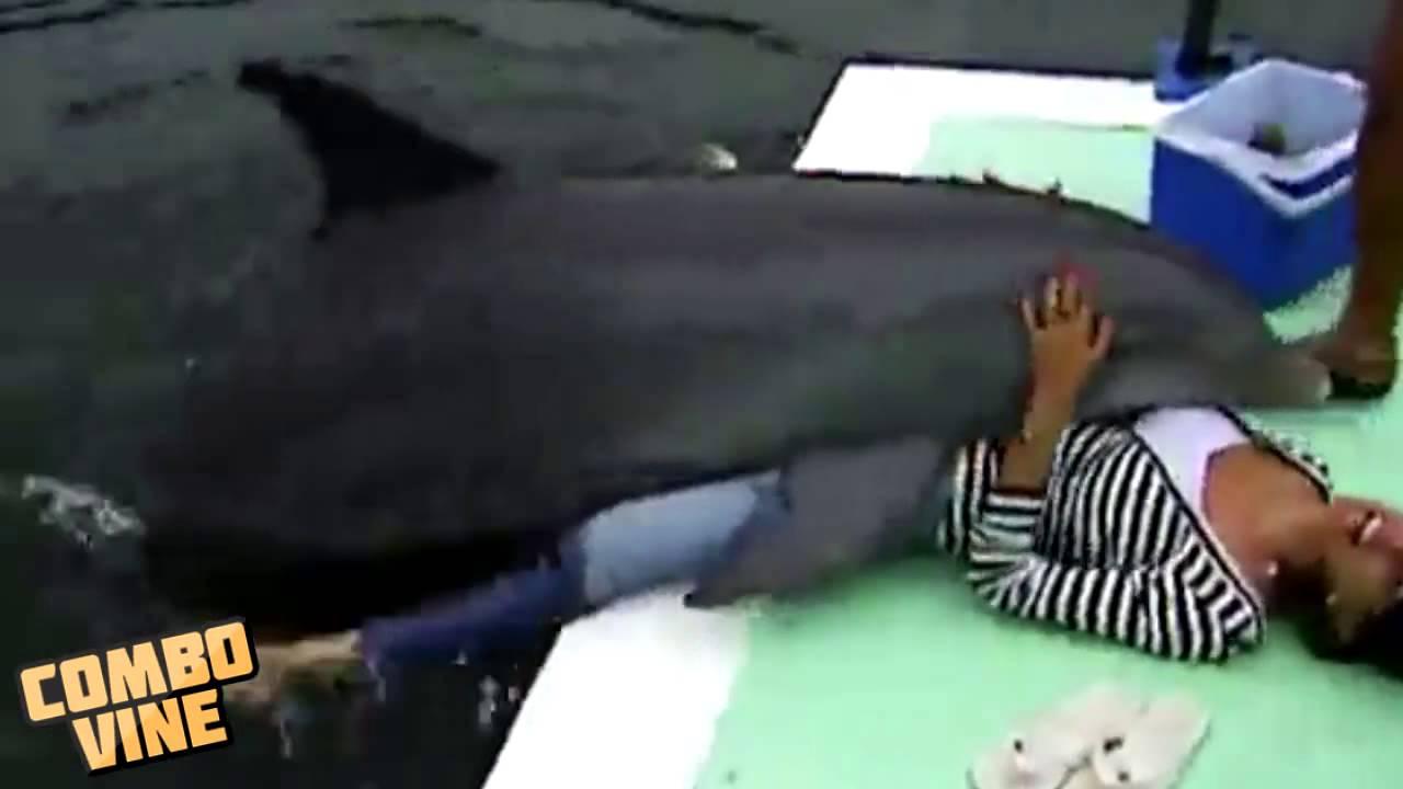 Дельфин ебет девку