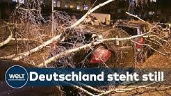 STURM SABINE: Orkan wirbelt Nord- und Westdeutschland durcheinander