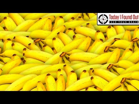 how to keep bananas fresh for a week