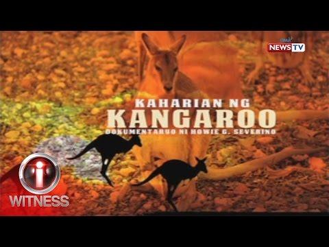 I-Witness: 'Ang Kaharian ng Kangaroo', dokumentaryo ni Howie Severino (full episode)