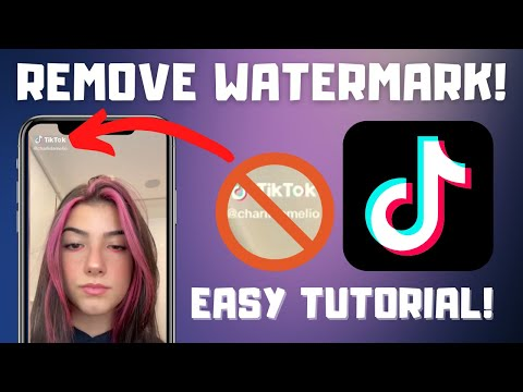 How To Download Tiktok Video Without Watermark In Iphone Youtube