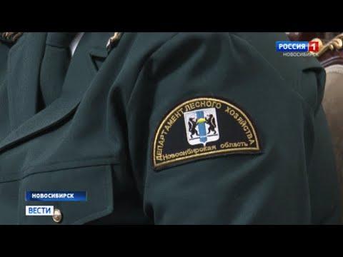Минприроды Новосибирской области отчиталось о своей работе в 2019 году