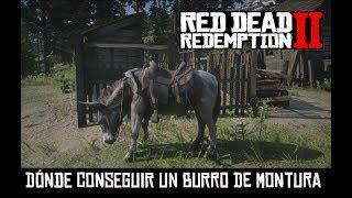 RED DEAD REDEMPTION 2 -DÓNDE ENCONTRAR UN BURRO-