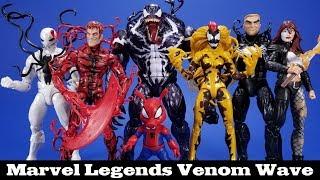 Marvel Legends Venom Series Review Hasbro Spider-Man