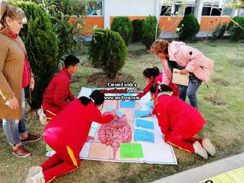 estrategia-global-2019-de-mejora-escolar-en-tÉcnica-36