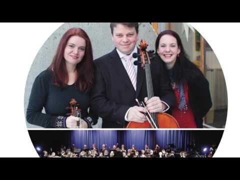 Beethoven triple concerto, Rondo alla polacca