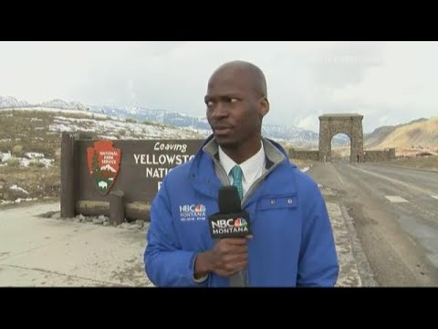 A reporter's reaction when a bison herd approaches has the internet ...