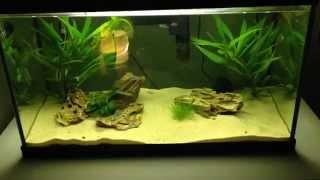Marina Style Tank 60 Litre Aquarium