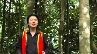 Hương quế Trà Bồng - Hoàng Dũng